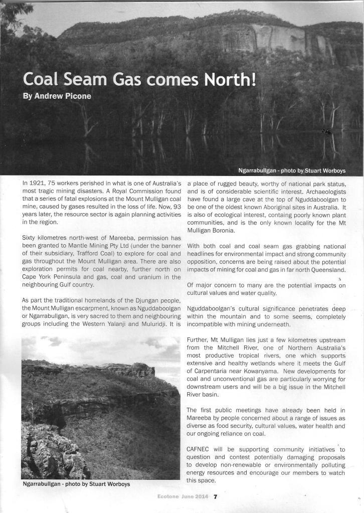 CSG Cafnec Article